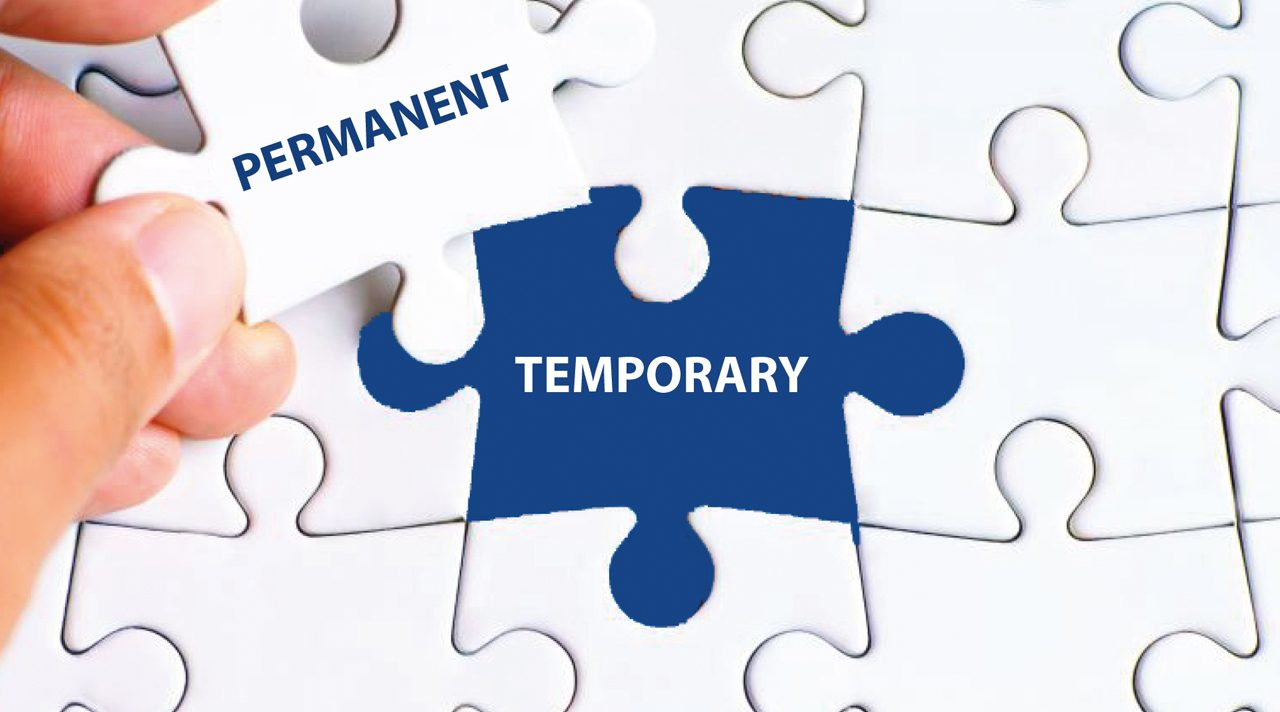 Employment status and temporary workers